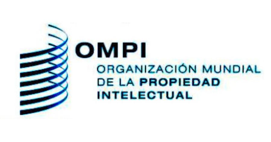 Bibliotecas y derechos de autor a debate en la 37ª reunión del Comité Permanente de Derecho de Autor y Derechos Conexos