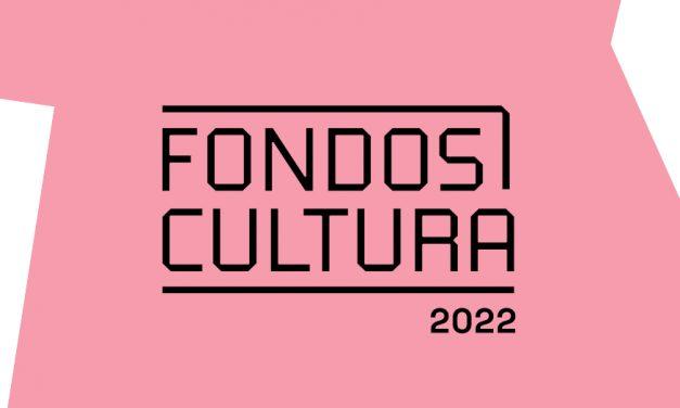 Fondos Cultura Chile anuncia la convocatoria 2022 para la reactivación y recuperación del sector cultural