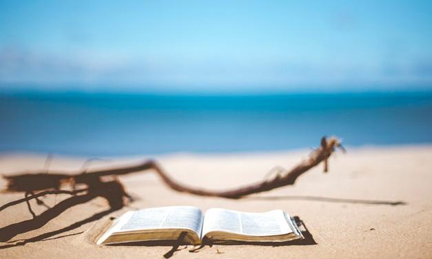 Un mes bajo el sol para las lecturas de verano